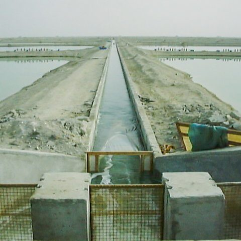 Basic (complementary) &  detailed design studies of west Bahu Kalat shrimp breeding complex- Sistan & Baluchistan province