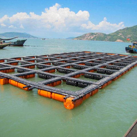 Environmental Assessment Studies of Fish Breeding in cage in the Caspian Sea located in Guilan province