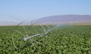 کشاورزی و منابع طبیعی