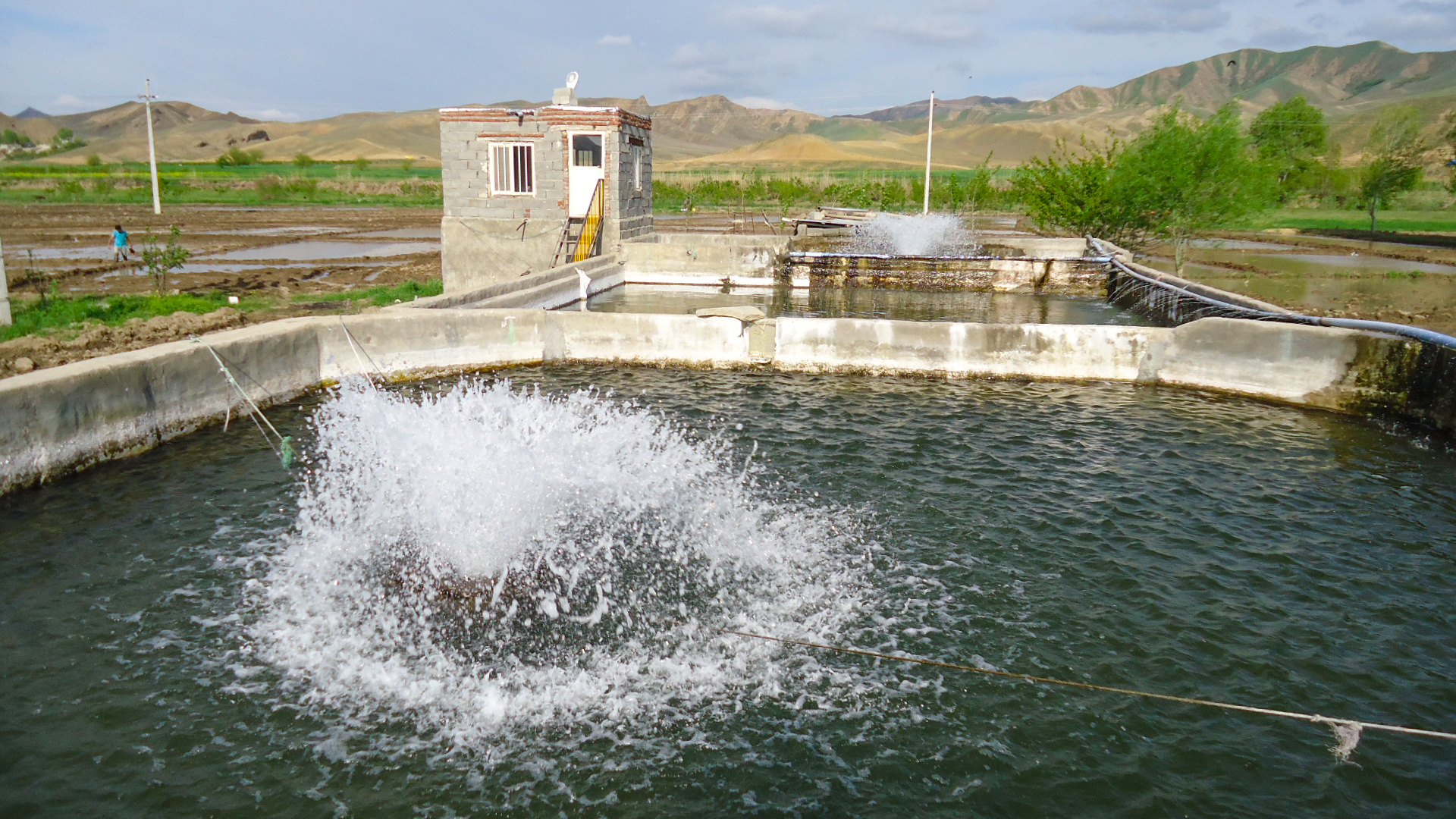 Feasibility study on construction of fisheries estate in Germi County