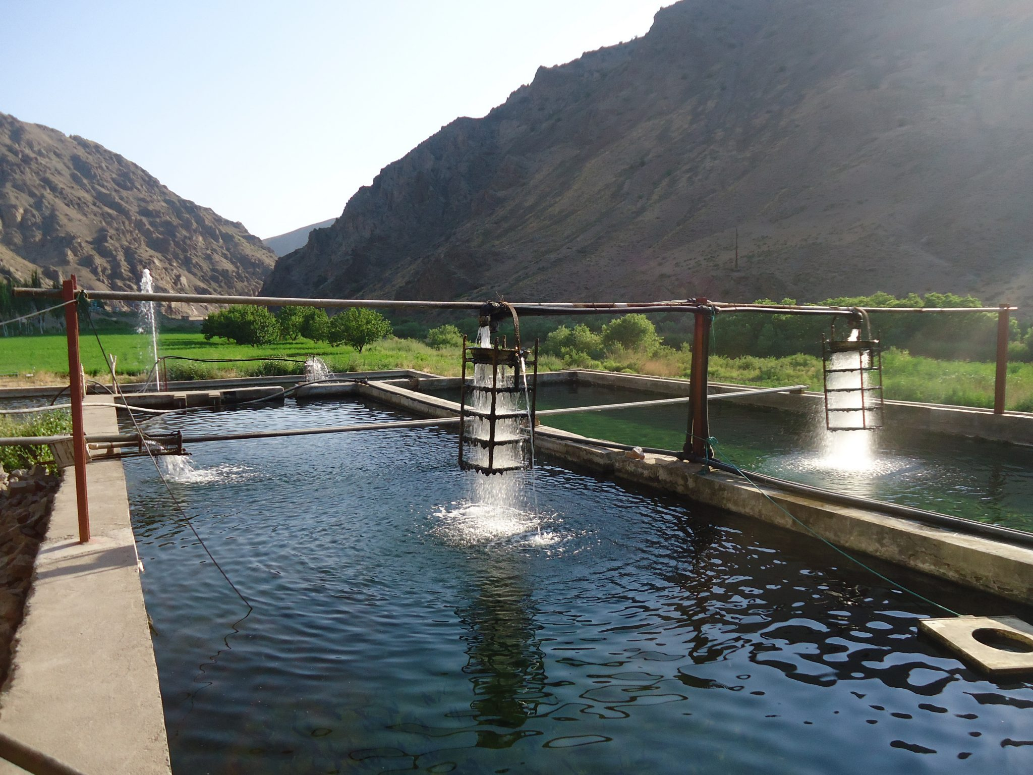 Assessing the existing cold-water fish farms and providing solutions for increasing aquaculture production
