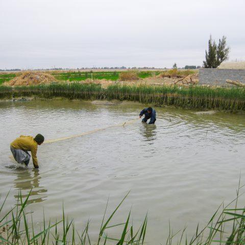 مطالعه، طراحی و تهیه نقشههای اجرایی سایتهای شمالی و جنوبی مرکز تکثیر ماهی زهک