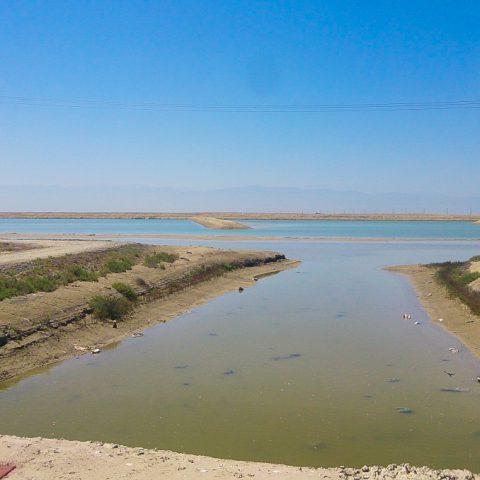 مطالعات مرحله سوم – نظارت عالیه و کارگاهی طرح احداث حوضچه ماند مجتمع پرورش میگوی گمیشان – در استان گلستان