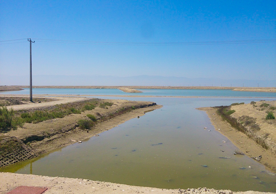 Superior and construction supervision of Gomishan shrimp breeding complex pond in Golestan province